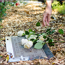 gravesite and rose